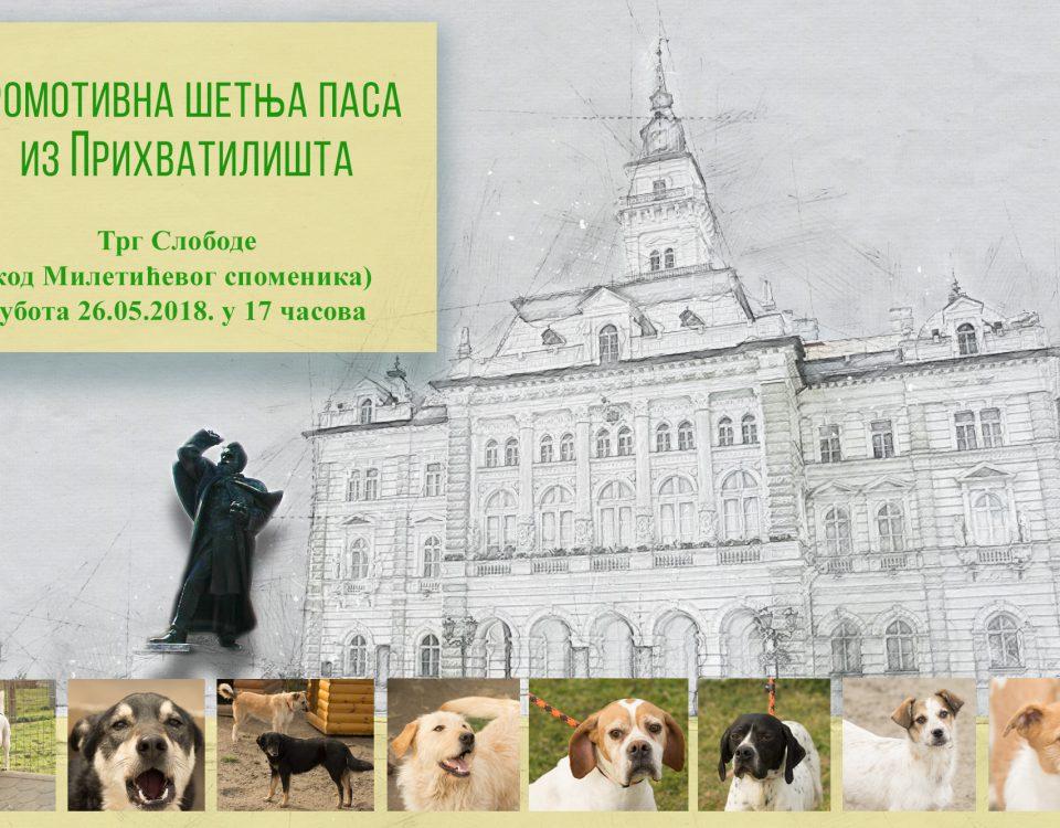 Promotivna-šetnja-pasa-maj-2018