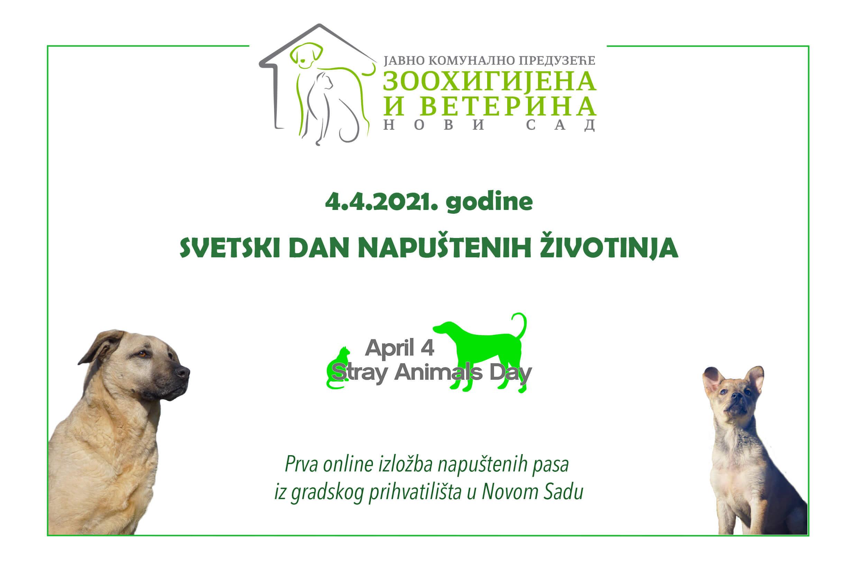 Online izložba napuštenih životinja iz gradnkog Prihvatilišta u Novom Sadu - 4.4.2021.